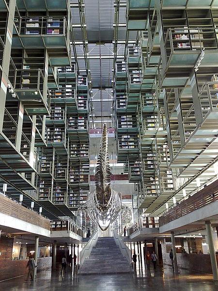 [[File:Vasconcelos library.jpg|Vasconcelos library]]